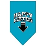 Happy Meter Screen Print Bandana Turquoise Large